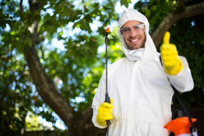 Pest Control in Tooting, SW17. Call Now 020 8166 9746