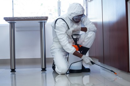 Emergency Pest Control, Pest Control in Tooting, SW17. Call Now 020 8166 9746