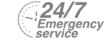 24/7 Emergency Service Pest Control in Tooting, SW17. Call Now! 020 8166 9746